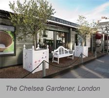 The Chelsea Gardener, London
